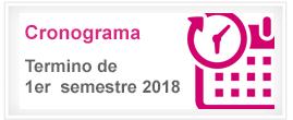 Cronograma termino primer semestre 2018
